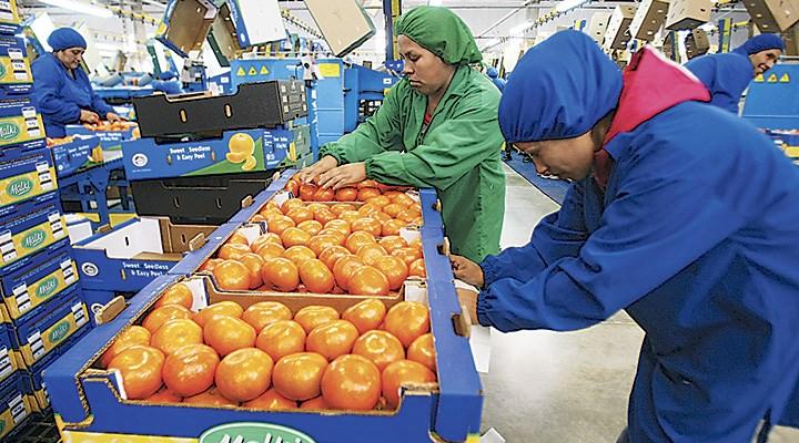 INEI: La cifra del desempleo en Lima Metropolitana subió a 7.3%
