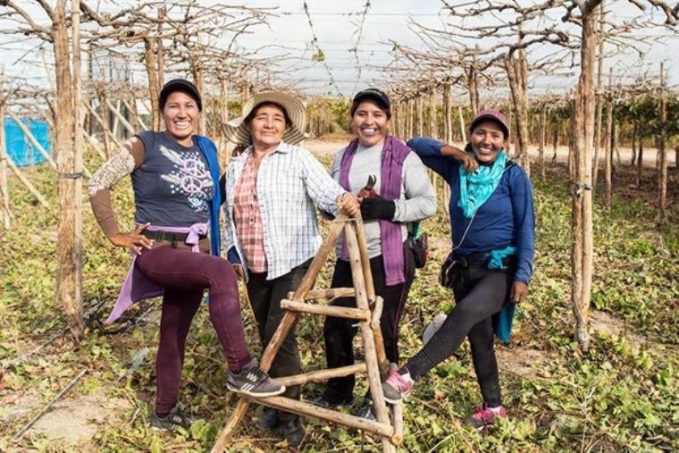 Mujeres líderes buscan mejorar la gestión del agua en la cuenca Quilca-Chili - El Peruano